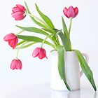 Tulips & Vase by AnnieD