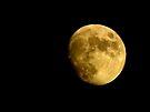 Moon v2 by kutayk