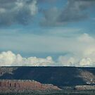 New Mexico Landscape by carol selchert