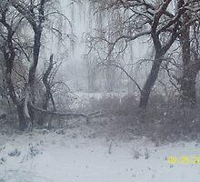 Snow Scene 2 by rockinmom5509