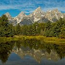 Schwabacher's Landing by Joe Elliott