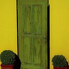 Green Door by EvaMarIza