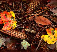 Fall is Falling by vigor