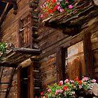 Old Zermatt, Switzerland by Tomas Abreu