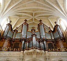 Amazing organ by bubblehex08