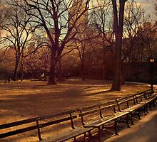 Central Park, New York City by Ina Jungmann