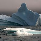 Ice Pinnacle by Elisabeth van Eyken