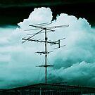Antenna by Laurent Hunziker
