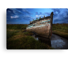 Well Grounded Canvas Print