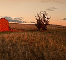 Pioneer's dream by Tony Middleton