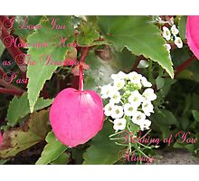 Natures Heart Photographic Print