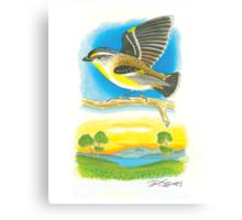 Striated Pardalote Canvas Print