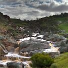 Mannum Waterfalls by Dave  Hartley