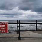 danger from heavy seas... by Toni pepper