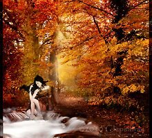 Autumn Reverie by Filipa Nunes