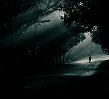 dark ahead! by Dinni H