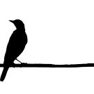 Bird on a Wire by Orest Macina