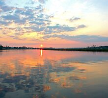 The Beauty of Back Bay by Bridgette O'Keefe