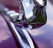 37 Cadillac by Jim Butera