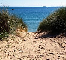 Steps on the sand by Franlaval