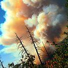 Yosmemite Wild Fire  August 2009 by Luuezz