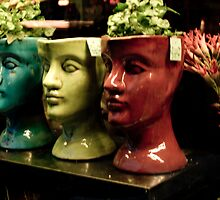 Pot Heads by Aaron Wilson