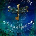 Dragonfly Rising by Aimee Stewart