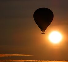Up,up and away... by IngridSonja