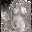 Angel Calendar 2014 by James McHugh