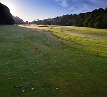 listowel golf club - 014 by Paul Woods