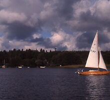 Winter sailing in Stockholm by Maggie Hegarty