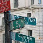 5th Ave. by Shebu