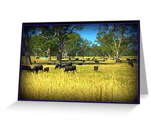 Cows in the country Greeting Card