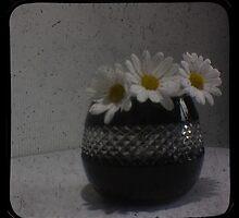 Daisy TTV by inkedsandra