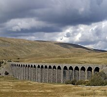 Ribblehead Viaduct  by Tom Curtis