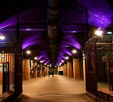 ~ Granary Wharfe, Leeds, Floodlit In Purple ~ by Sandra Cockayne