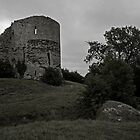 Pevensey Castle by Trip69