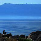 Fishing by Aleksandra Misic