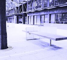 Broadgate Bench by Richard Ray