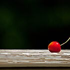 Rainier Cherry  by Robert H Carney