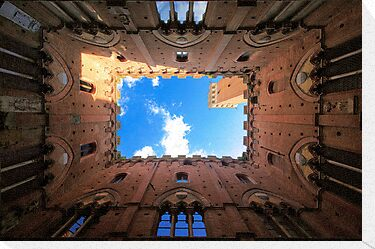Looking up by Inge Johnsson
