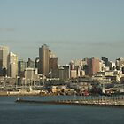 Auckland  by Suzy1
