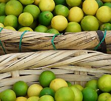 Zest of Nicaragua by Louise Mackley