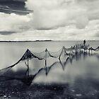 Waltz by the river  by Bogdan Ciocsan