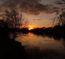 Park Sunset by Peter Barrett