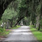 "at Bonaventure Cemetery Savannah GA by Edmond J. [""Skip""] O'Neill"