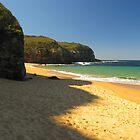 Turimetta Beach, Sydney, Australia by Napier Thompson