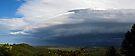 Shelf cloud  by Odille Esmonde-Morgan