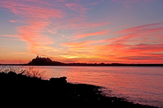 Nobby's Pink Sunrise by Liz Percival