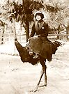 Going for a Ride ............on an Ostrich???   by BCallahan